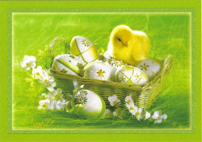 Маленький цыпленок с яйцами